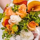 Svatby V Barvach Svatebnivyzdoba Cz